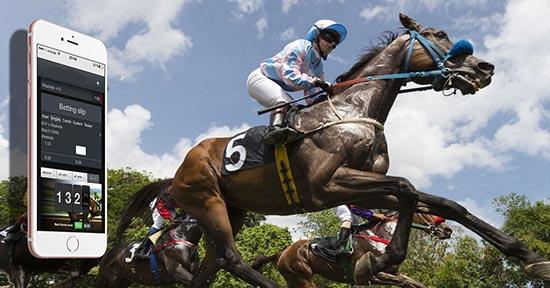 آموزش شرط بندی اسب سواری + نکات مهم و ترفندهای برد